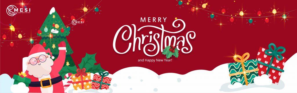 Mery Christmas Giang Sinh 03