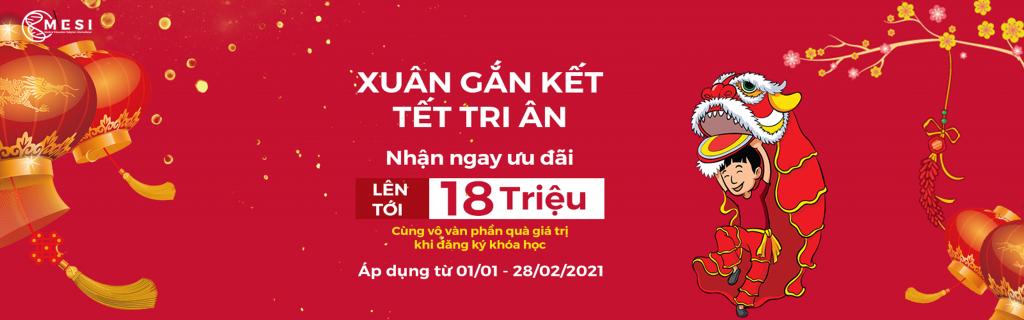 Xuan Gan Ket Tet Tri An Banner Web 2 (1)